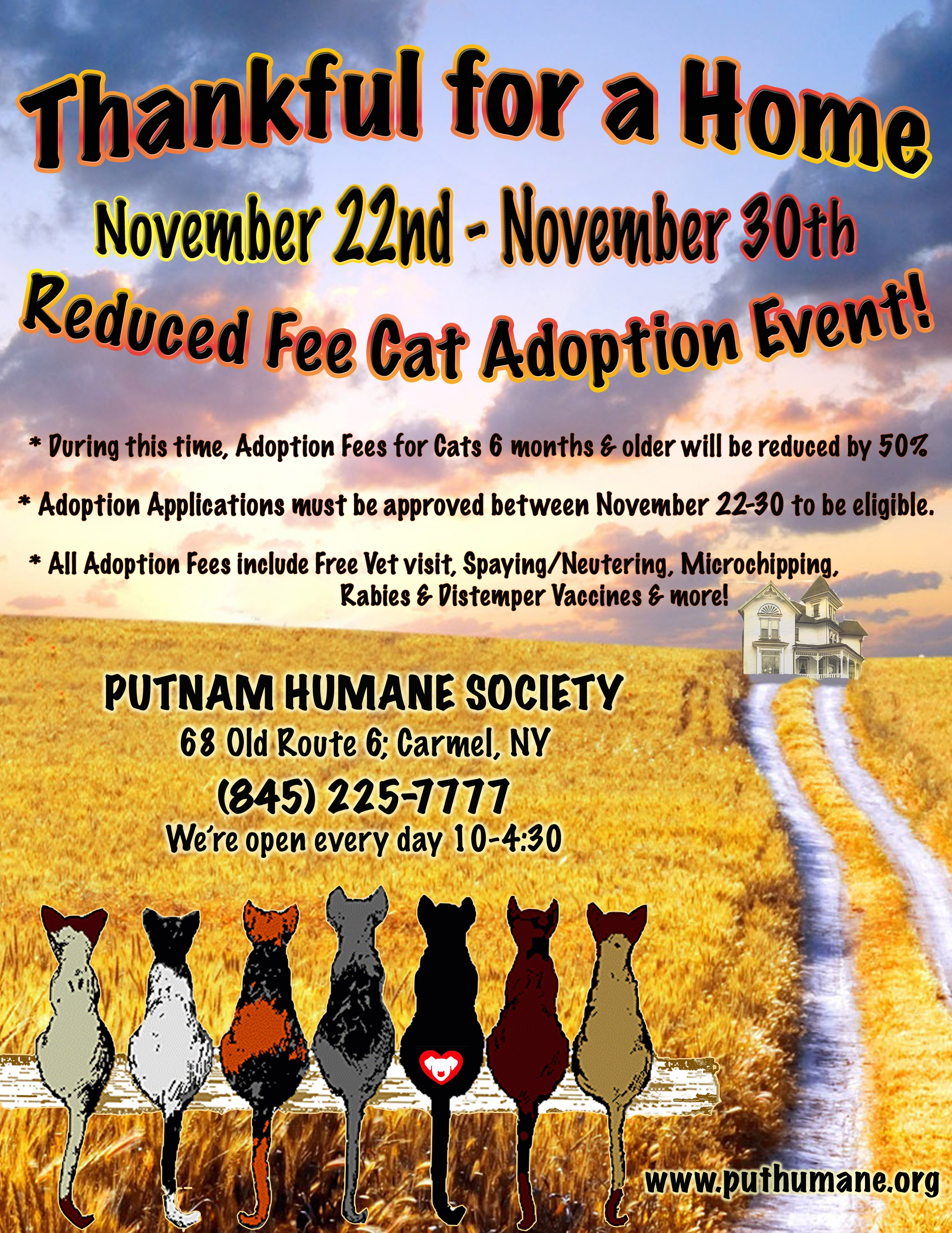 Upcoming Events Giving Thanks Reduced Fee Cat Adoption