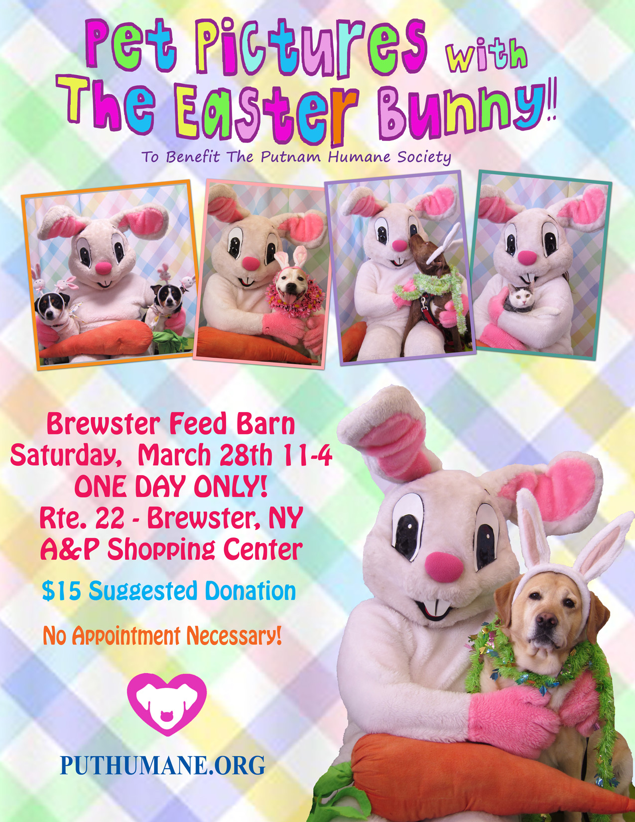 Upcoming Events Pet Pictures With The Easter Bunny