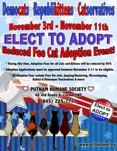 Elect to Adopt Cat Adoption Event 2015