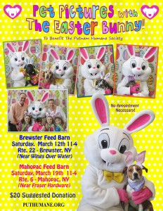 Pet Pictures with the Easter Bunny 2016