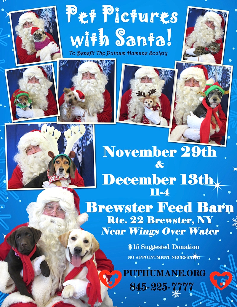 Upcoming Events Pet Pictures With Santa At The Feed Barn