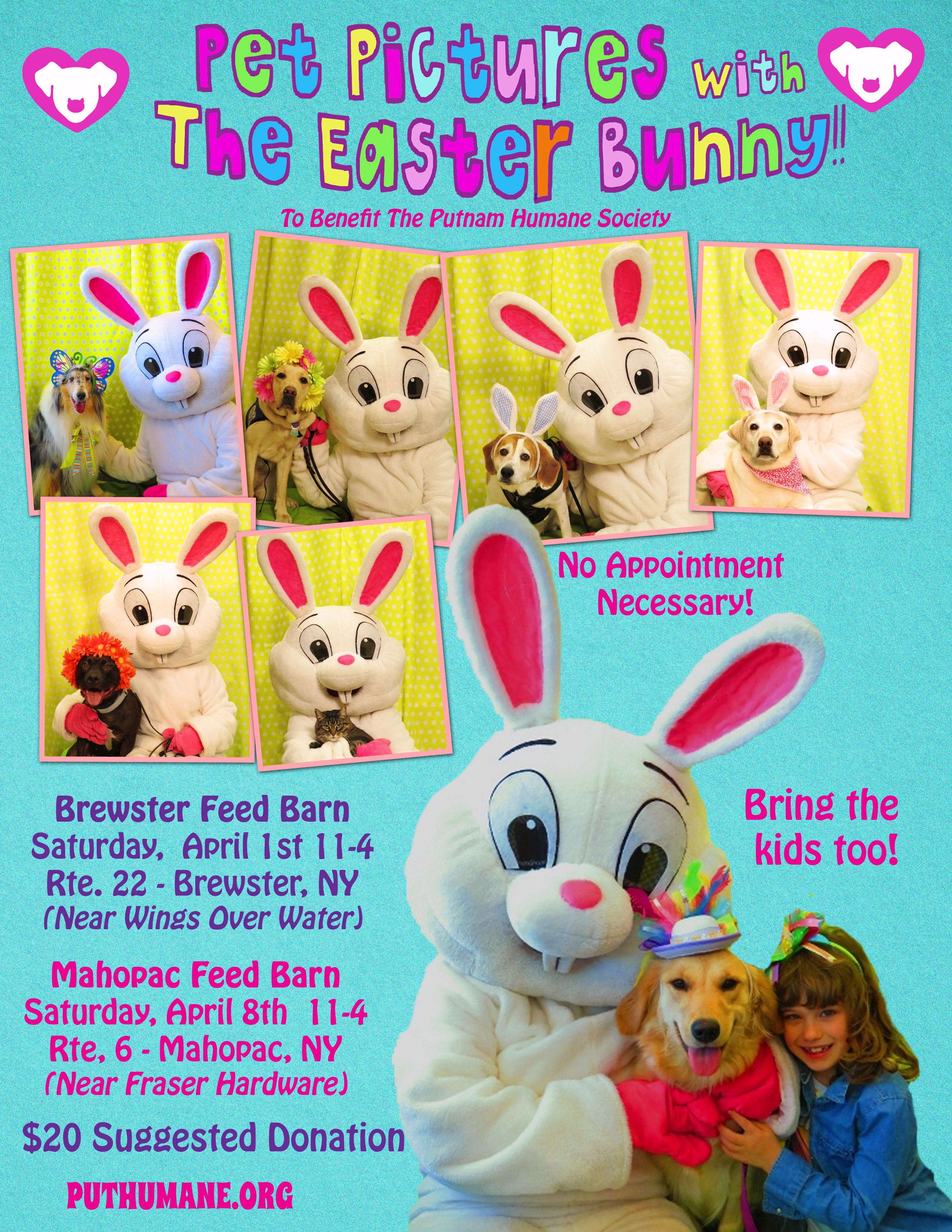 Upcoming Events Pet Pictures With The Easter Bunny At